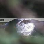 2019-chevrolet-corvette-3