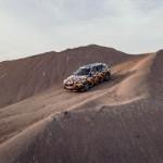 BMW X2 (6)