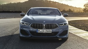 bmw 8 series coupe (2)