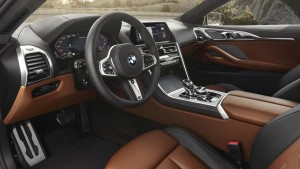 bmw 8 series coupe (6)