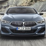 bmw 8 series coupe (8)