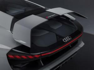 Audi PB18 E-Tron Concept (25)