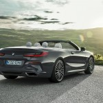 bmw 8-series convertible (42)