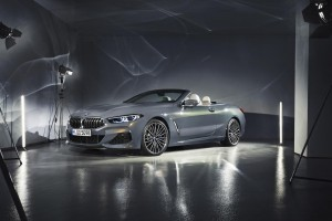 bmw 8-series convertible (47)