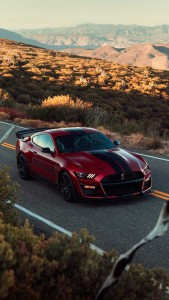 2020 ford shelby gt500 (133)